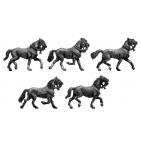 Light horse trotting