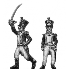 Grenadier, Officers