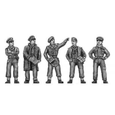 Desert winter command group