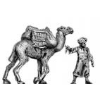 Baggage camel