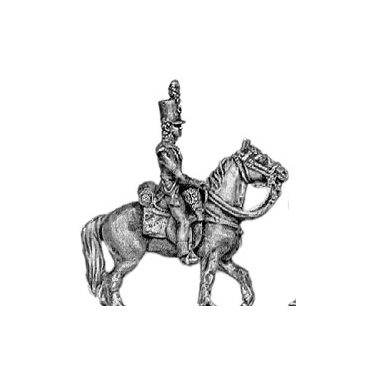 Light infantry mounted officer