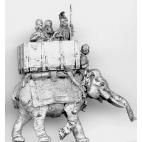Elephant and crew