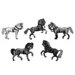 Personality Horses