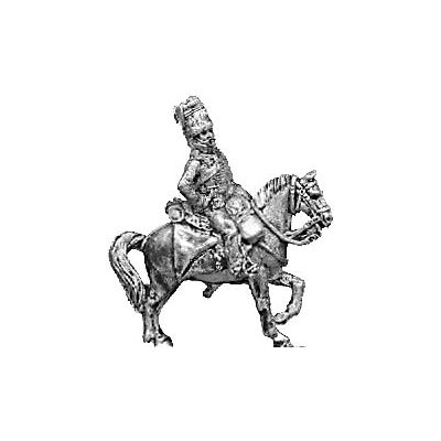 Hussar officer, busby