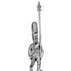 Grenadier NCO, shako